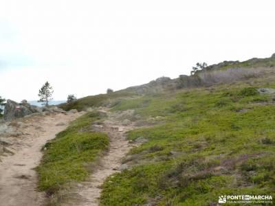 La Jarosa,Cumbres del Guadarrama; senderismo sierra guadarrama rutas para hacer senderismo rutas a p